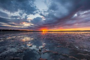 Duxbury Beach Sunset.jpg